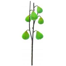 Crisantemo Granate