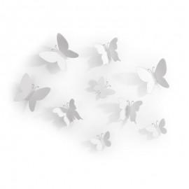 Mariposa Umbra colores